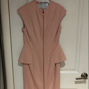 Ted baker dress ( size 2 in Ted baker )